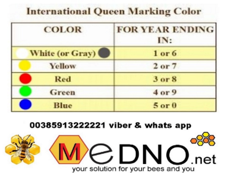 Queen bee marker - internationa