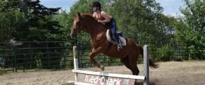 horesback riding at medolark