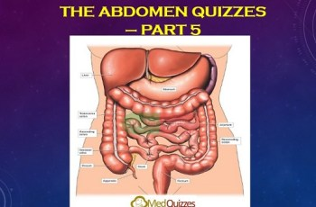 The Abdomen quizzes 5