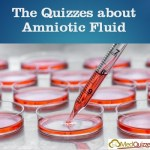 The Quizzes about Amniotic Fluid