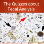 The Quizzes about Fecal Analysis
