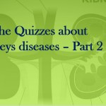 The Quizzes about Kidneys diseases – Part 2