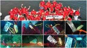il BioBlitz marino, i subacquei che contribuiscono attivamente alla ricerca