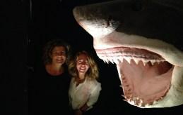 il grande squalo bianco: con l'Università di Aberdeen studiamo la genetica di questa specie