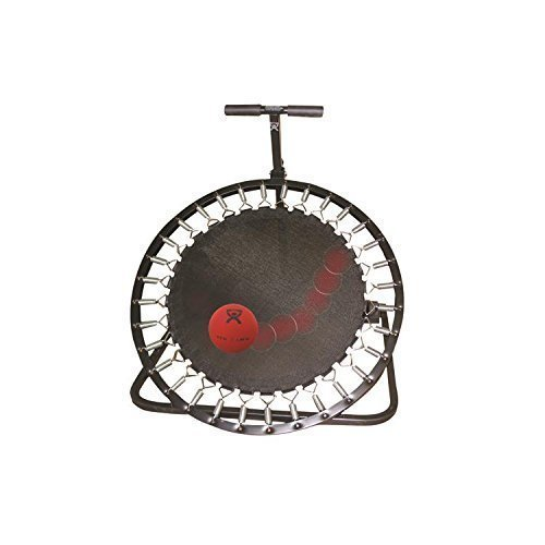 CanDo-10-3136-Adjustable-Ball-Rebounder-Set-with-Circular-Rebounder-5-Balls-0