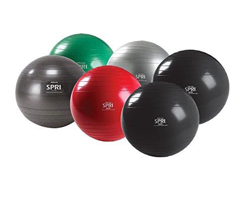 SPRI-Elite-Xercise-Balance-Balls-0