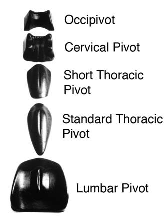 TX-Soft-Tissue-System-Type-Standard-Thoracic-Pivot-0