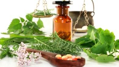 Photo of Поліпшите ефект від лікування при бронхіті — використовуйте ефірні масла