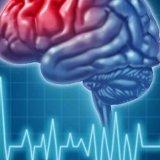 Photo of Лікування і профілактика інсульту головного мозку