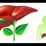 Photo of Які продукти сприяють роботі печінки