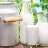 Photo of Козяче молоко корисне для здоров'я