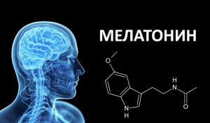 Photo of Мелатонін: опис гормону