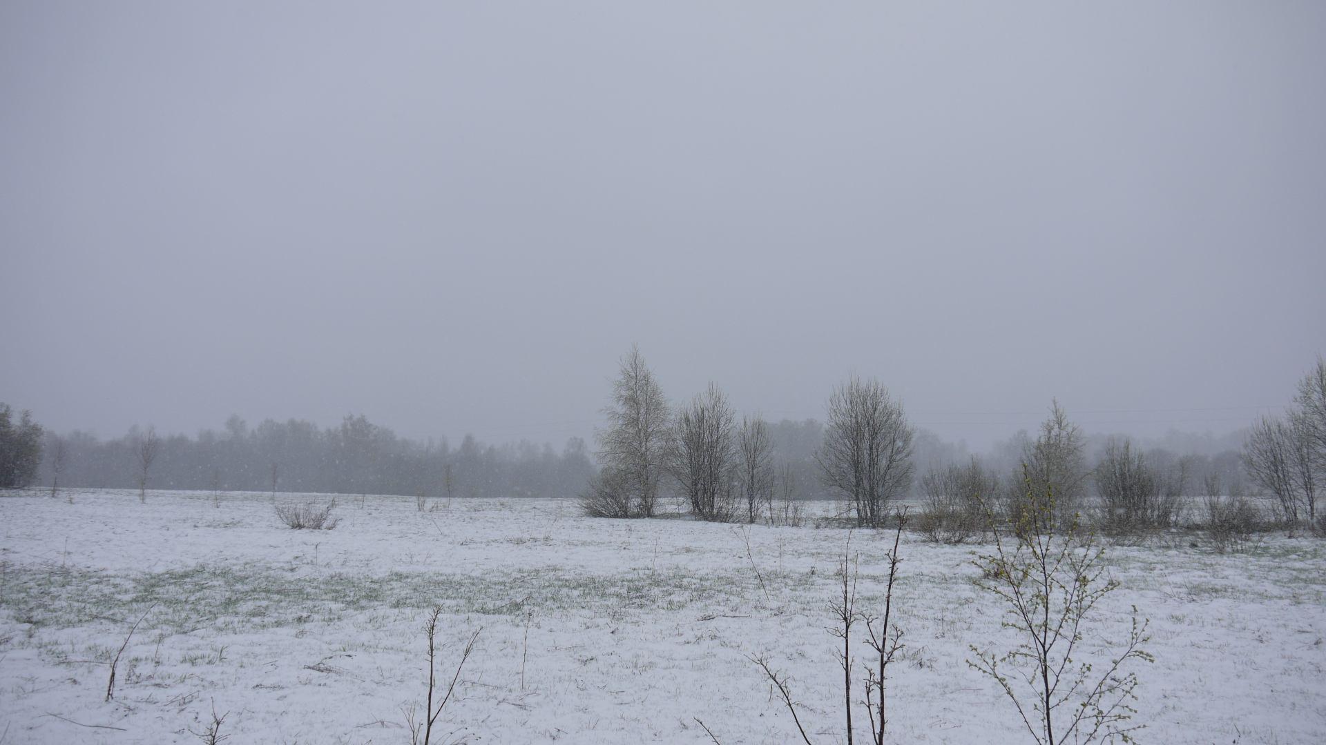 Погода в татарстане на 2 недели