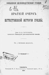Сатунин, Константин Алексеевич