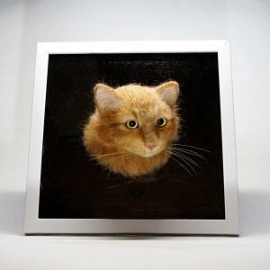 フレームの中の羊毛フェルトのネコさんです