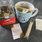 piTea orangentee für tee genießer mit teefilter und holz-stick