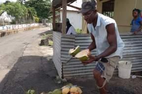Kokosnuss-Stopp