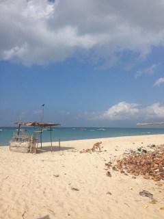 Beautiful beach at Dhanushkodi