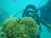 Met Nemo