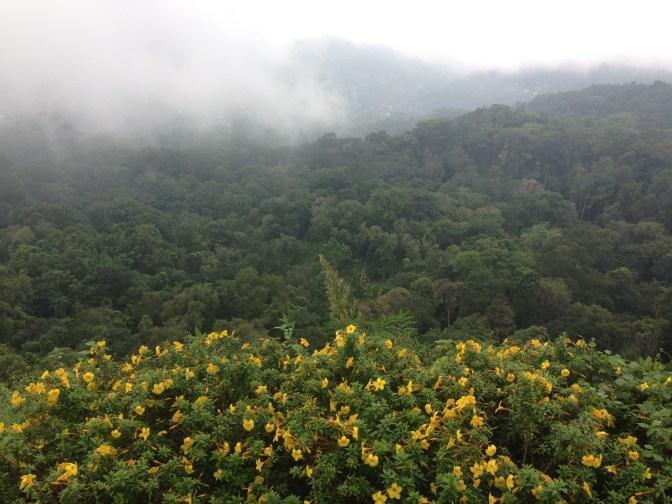 Fog rolls in over hills