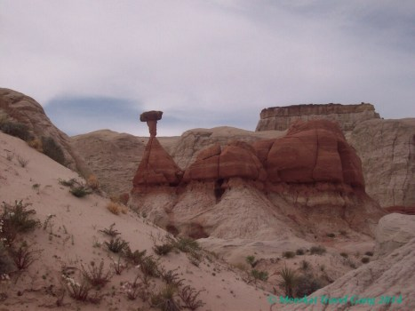 In the Grand Staircase-Escalante BLM there are a number of marked and unmarked hiking trails. This one, Toadstools, was easy to get to from where we were staying (near Big Water) and it is a nice, easy hike