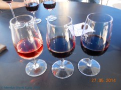 We could choose 3 wines to taste, from a whole range produced by the Tempus Alba estate. The glass on the right is a Malbec Rose, the middle is a Malbec and the last glass is a Shiraz. Don't ask me what year they're from... but they were all sooo good!