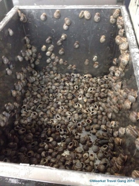 You can buy a bag full of live snails - they're still moving around, their shells rubbing against each other making a sound like soft sandpaper slowly scraping over each other.