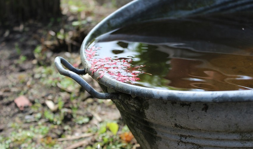 besparen op water