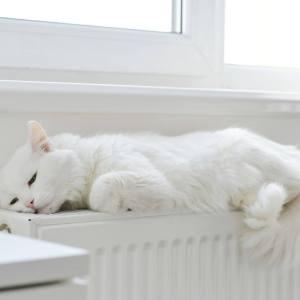 radiator toekomst