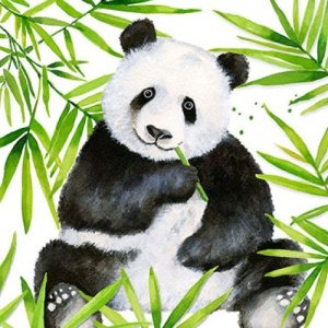 Servetten tropical panda 33x33
