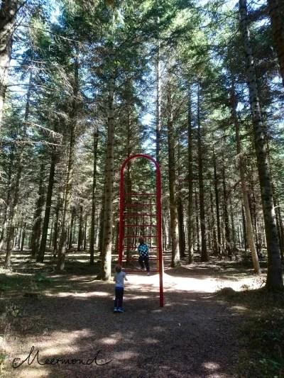 Blokhus Gateway Wald Fitness