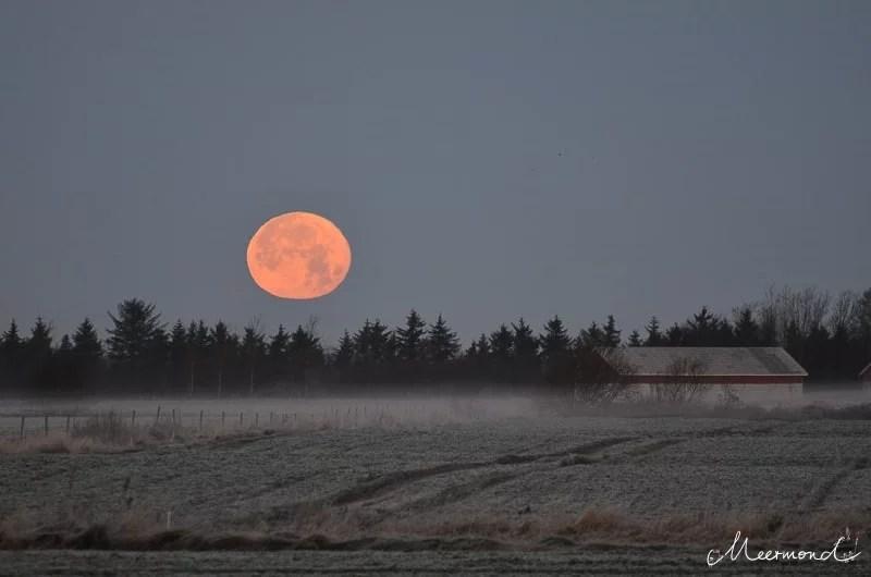 Vollmond im Januar mit dänischer Landschaft