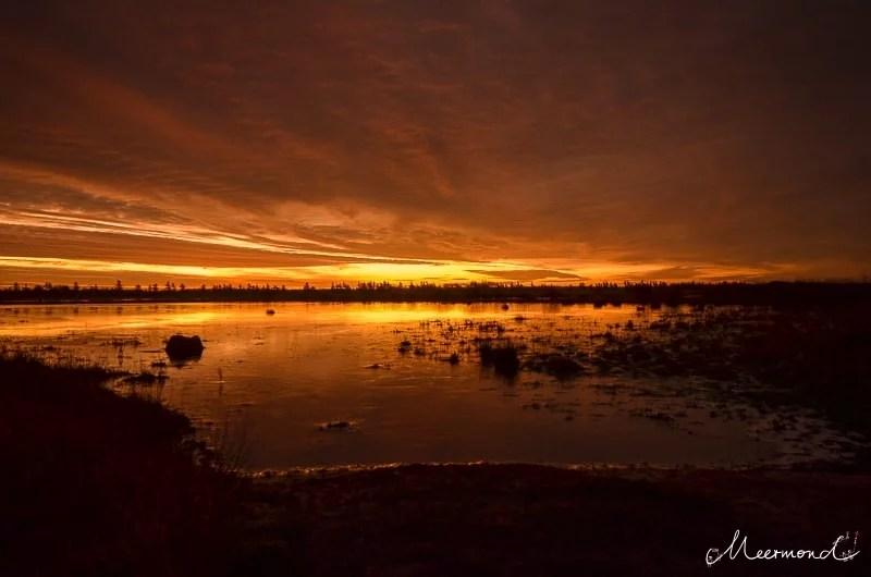 Sonnenuntergang Dänemark