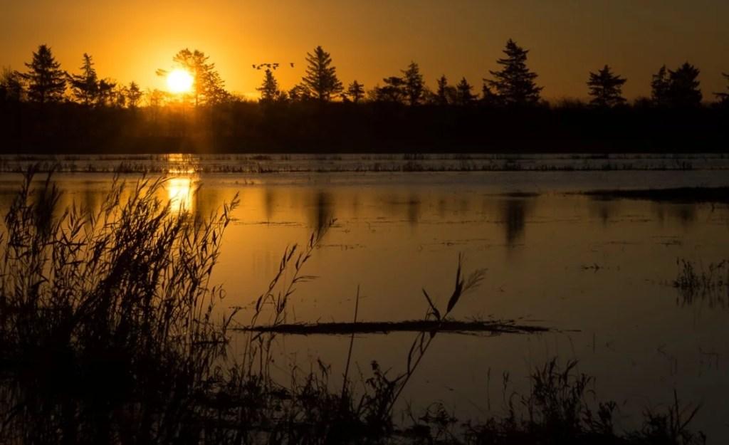 Sonnenuntergang am See in Dänemark