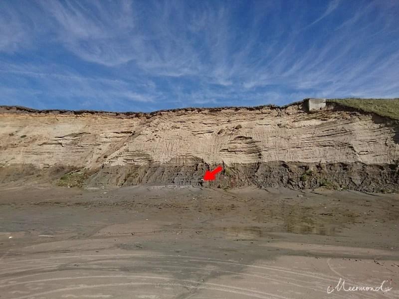 Schlamm Steilküste Nr Lyngby
