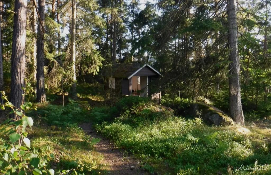 Hütte Schweden Wald