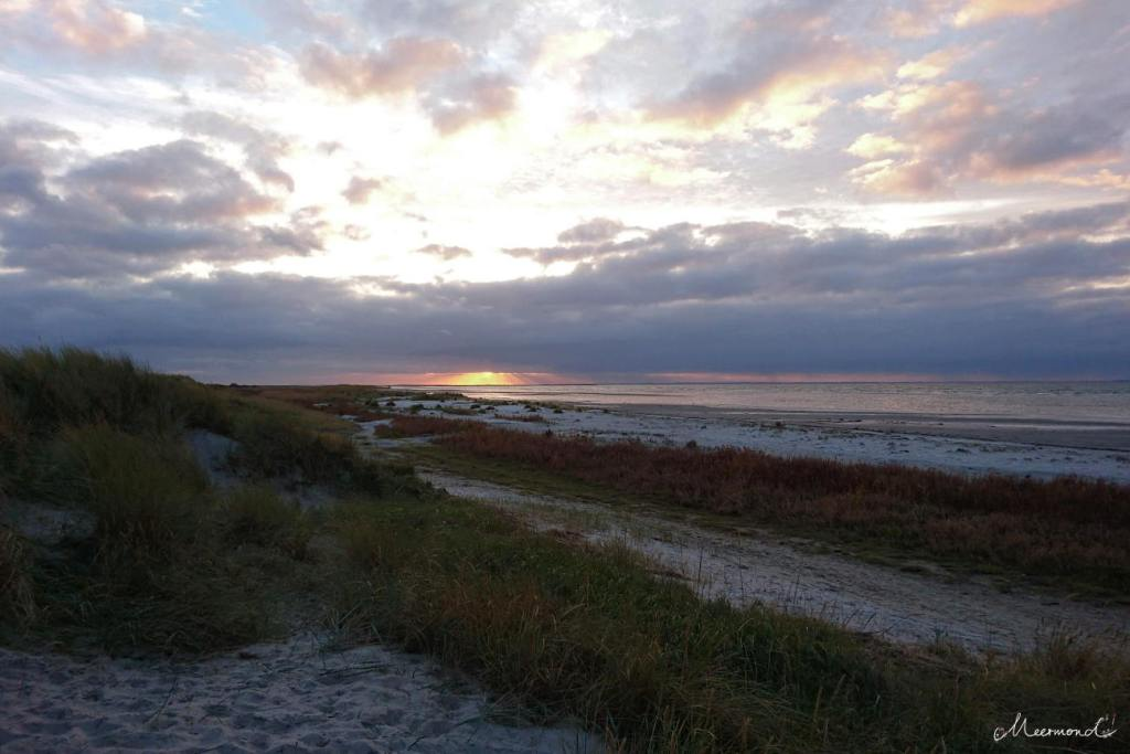 Læsø Vesterø Sonnenuntergang