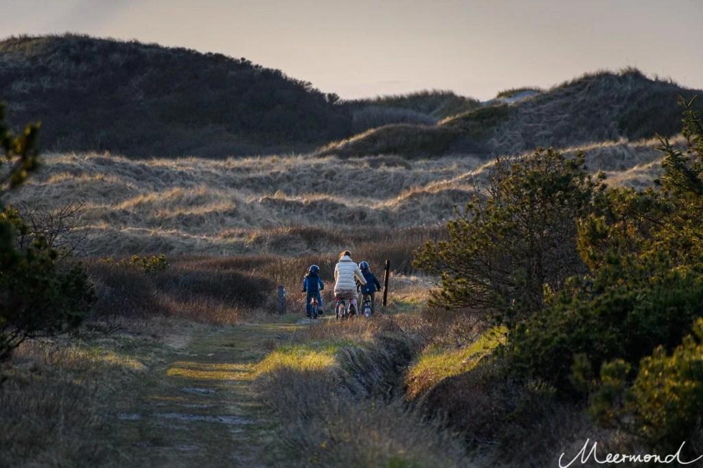 Fahrradtour in den Dünen Dänemarks