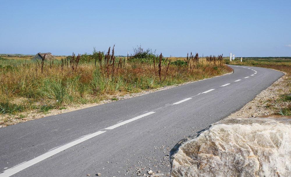 Fahrradurlaub in Dänemark - Radweg bei Nymindegab