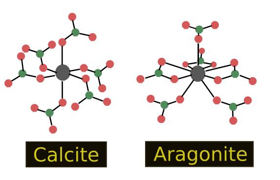 acidificazione degli oceani: calcite aragonite