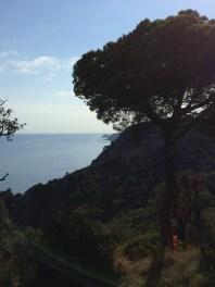 day-8c-mediterranean4