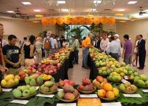 30th Mango Festival coming to New Delhi