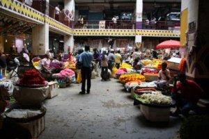 Karnataka International Travel Expo reveals world-class destination