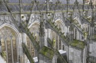 Een Wonderlijke Klim Den Bosch image source eenwonderlijkeklim.nl