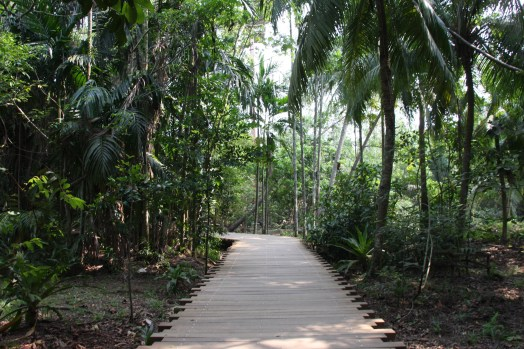 Pulau Ubin walking trail