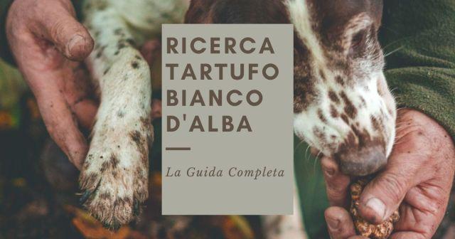 La Guida Completa alla Ricerca del Tartufo Bianco d'Alba