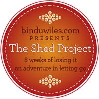 bindu's shadadventure