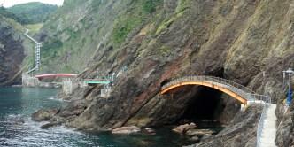 Walkways woven into the rock