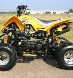250cc atv kazuma 250 cc atv [ 1536 x 1024 Pixel ]