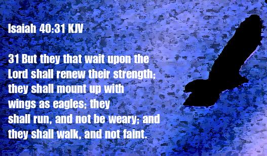 Isaiah 40.31 eagles copy
